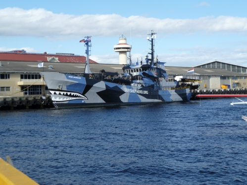 The Sea-shepherd docked at Hobart