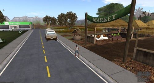 Children can visit the market and shops in the township to buy food and learn how to manage their virtual money