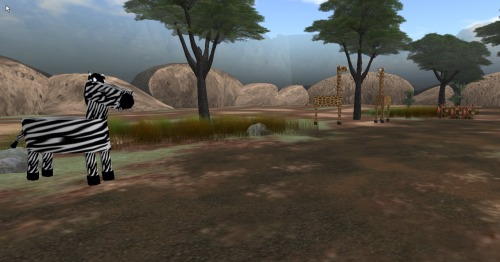 Children can go on safari trails in the 3D virtual world where they solve numeracy and literacy problems and answer quizzes about science in an exploratory environment